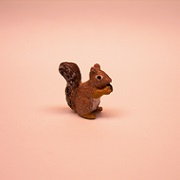 "1/2"" squirrel eating"
