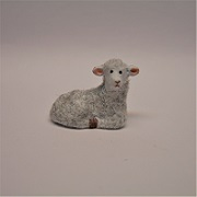 "1/2"" lamb laying"