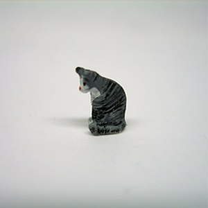 "1/4"" cat looking down"